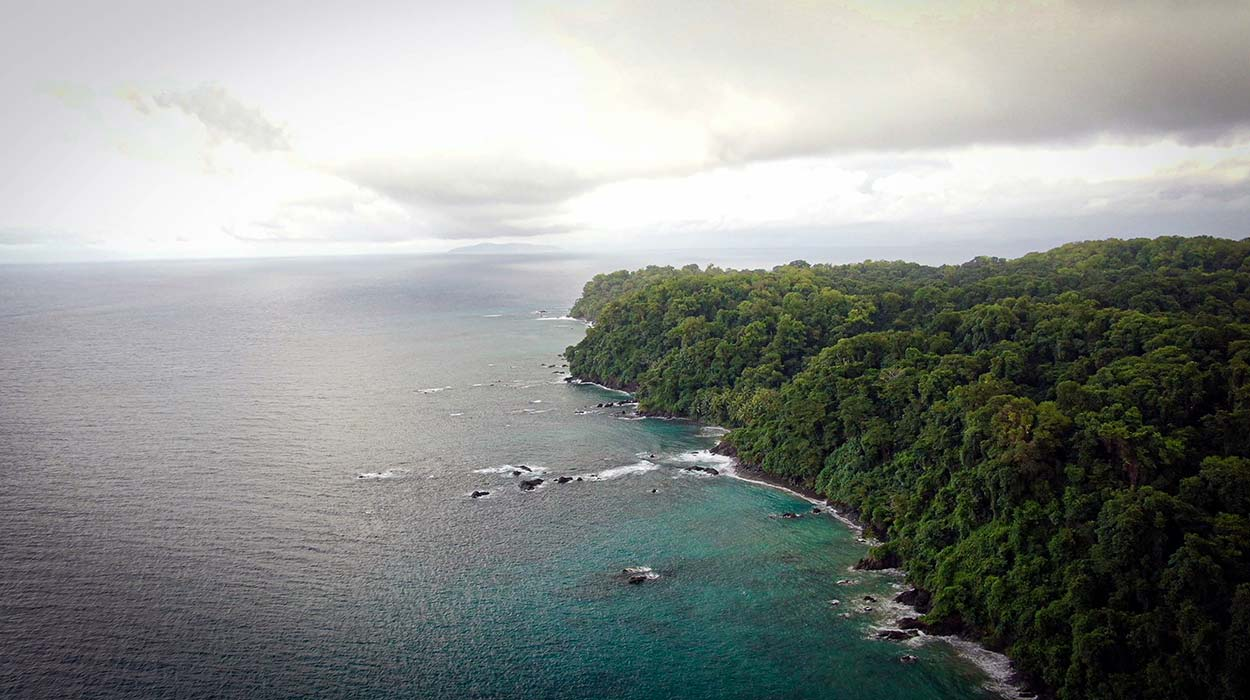 Isla del Caño - practical tourist information scuba diving