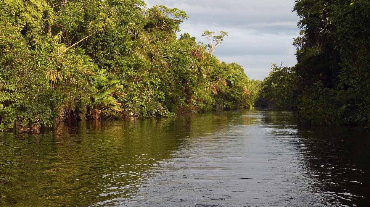 costa-rica-information-river-sierpe