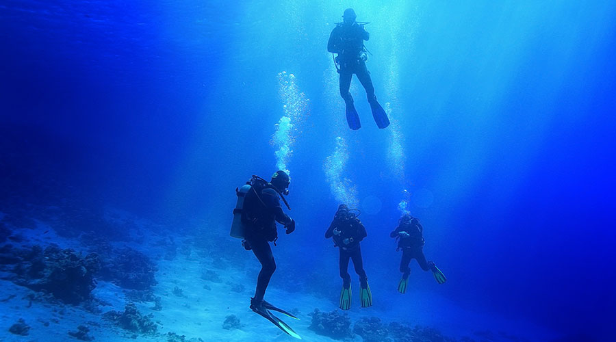 How-are-divers-trained