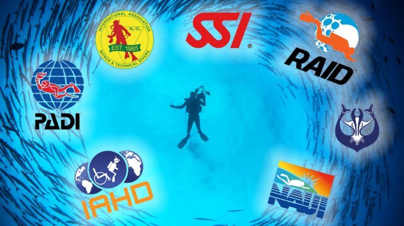 What-is-the-best-diving-organization-What-are-the-differences-in-diving-federations